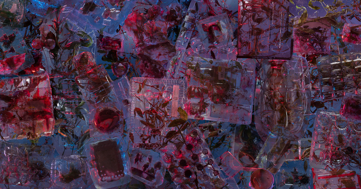 08_sarahknobel_syntheticnature_plasticcontainers_2020