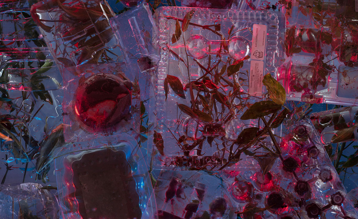 09_sarahknobel_detail_syntheticnature_plasticcontainers_2020